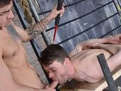 A Highly Subordinated Weenie Blower - Youri Chevalier & Masturbate Taylor